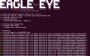 eagle_eye1_large_1_.png